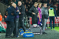 Football - 2016 / 2017 Premier League - Swansea City vs. Stoke City<br /> <br /> Swansea City manager Bob Bradley celebrates after swansea's 2nd goal, sunderland bench look sad f—, at The Liberty Stadium.<br /> <br /> COLORSPORT/WINSTON BYNORTH