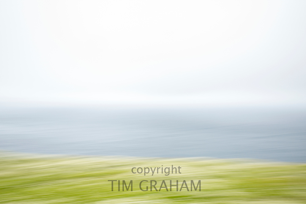 Impressions of nature - abstract blur of wildflowers on Skomer Island and Atlantic Ocean, South Wales