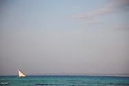 A dhow boat at sea, Zanzibar, Tanzania.