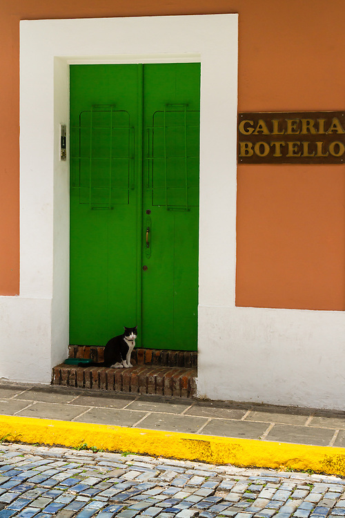 Just roaming the streets in Old San Juan, Puerto Rico one never knows what photographic opportunity may unfurl before you.
