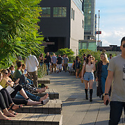 People relaxing in High Line Park, New York.