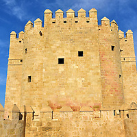 Forts & Castles - Three