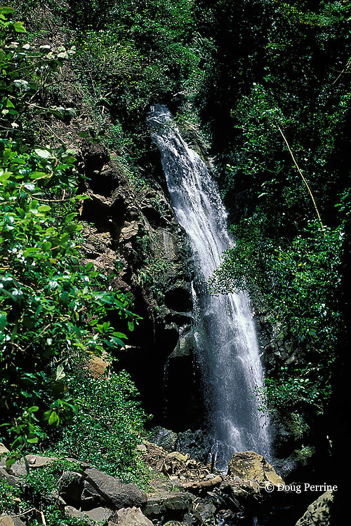 Falls of Baleine, Saint Vincent,  St. Vincent & the Grenadines, West Indies ( Eastern Caribbean Sea )