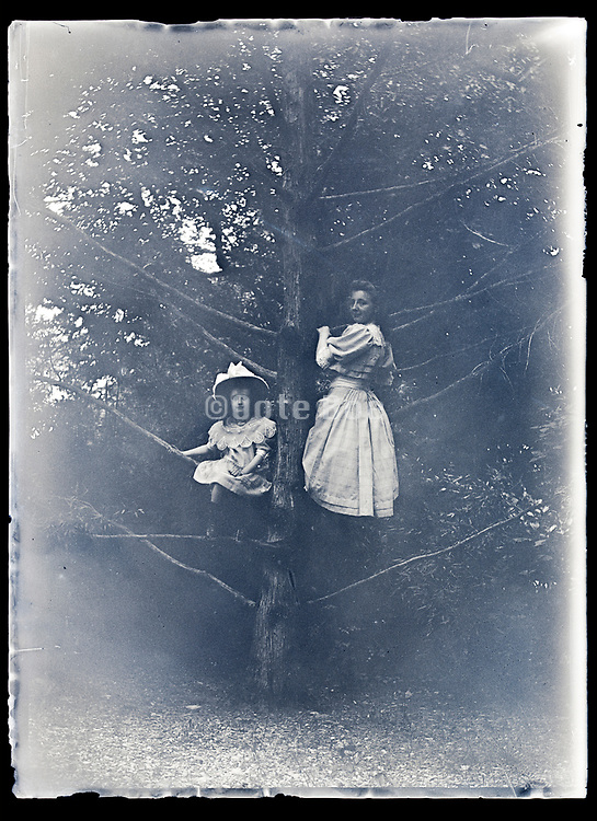 two girls posing in a tree France ca 1920s