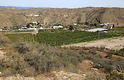 Fruit farming in River Andarax valley viewed from Los Millares prehistoric settlement, near Gador, Almeria, Spain