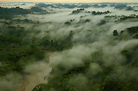 aerial view of morning mist above the Tiputini River in Yasuni National Park, Francisco de Orellana Province, Ecuador