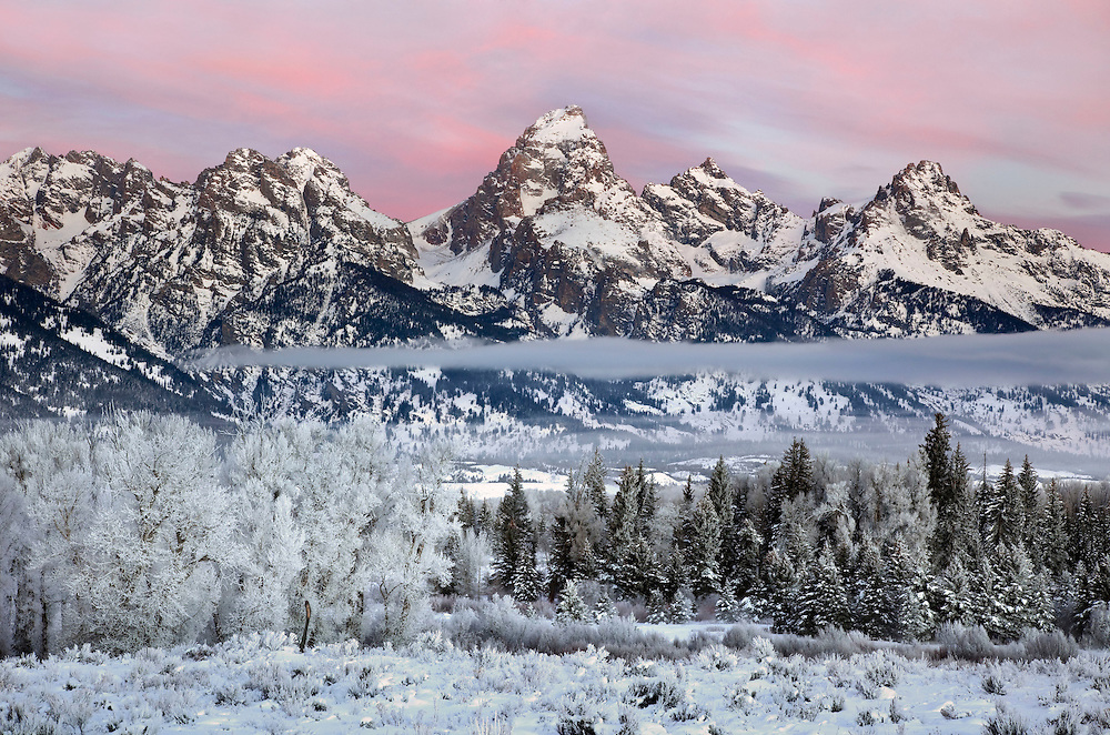 Winter coats the landscape in frost, Grand Teton National Park, USA.