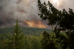 September 12, 2015 - Lake County, California, Cal Fire firefighting aircraft attaching the Valley Fire in Boggs Mountain State Forest. (Kim Ringeisen / Polaris)