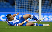 Brighton defender full back Liam Rosenior suffers an injury during the Sky Bet Championship match between Brighton and Hove Albion and Birmingham City at the American Express Community Stadium, Brighton and Hove, England on 28 November 2015. Photo by Bennett Dean.