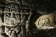 Yucatan Peninsula: Xcaret, Xel-Ha and Xplore parks. Shown carving of Aloxes known in the Mayan folklore as energy beings that can take human forms to be seen by passersby, celebrate, communicate with each other and to chastise and haunt humans when disrespect is shown to the jungles or to the Aloxes.  (June 2015/ photo by Essdras M Suarez/ EMS Photography©)