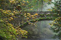 Stone Bridge over Whatcom Creek, Whatcom Falls Park Bellingham, Washington