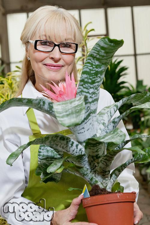 Portrait of a happy senior woman holding pot plant