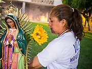 21 JUNE 2012 - PHOENIX, AZ: Georgina Sanchez in front of an alter to the Virgin of Guadalupe at the Arizona State Capitol Thursday. About 40 people, members of the immigrant rights' group Promise AZ (PAZ), gathered at the Capitol in Phoenix to wait for the US Supreme Court decision on SB 1070, Arizona's controversial anti-immigrant law, in the case US v. Arizona. The court's ruling is expected sometime later this month. Members of PAZ said they would continue their vigil until the ruling was issued.         PHOTO BY JACK KURTZ