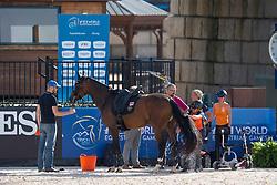 Van der Horst Rixt, NED, Findsley<br /> World Equestrian Games - Tryon 2018<br /> © Hippo Foto - Sharon Vandeput<br /> 15/09/2018