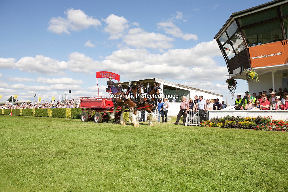 Great Yorkshire Show 2015 Heavy Horse Pairs Turnouts