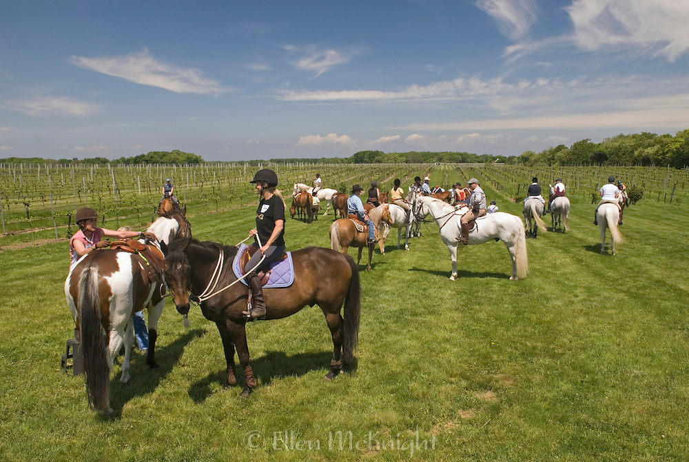 Spring Vineyard Ride 2008
