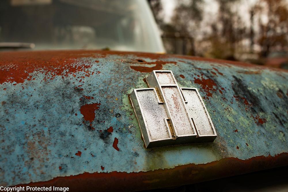 International Harvester truck hook badge. peeling paint, lichen and rust