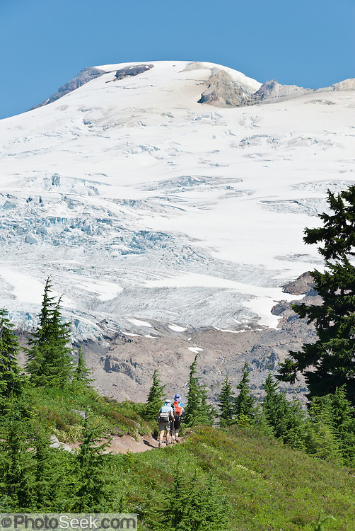 The Railroad Grade Trail follows a lateral moraine of the Easton Glacier which flows from the south side of Mount Baker (10,781 feet). Mount Baker National Recreation Area, Washington, USA.