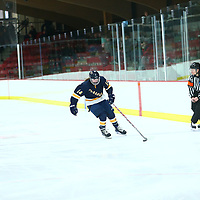 Women's Ice Hockey: University of Wisconsin, River Falls Falcons vs. University of Wisconsin, Eau Claire Blugolds