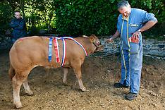 Foire primée aux veaux de lait à Monceau-sur-Dordogna