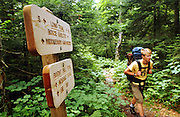 Hiking the Long Trail, Breadloaf Wilderness, Vermont