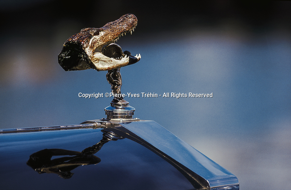 English humor can sometimes push a Rolls-Royce enthusiast to the incongruity ... When the head of a crocodile comes to gorge one of the world's most famous car mascots: the Spirit of Ecstasy