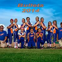 6-10-14 Bullets 2014