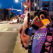 Kansas City Royals costume play; street scene during a First Friday event in the Crossroads area of Kansas City, Missouri