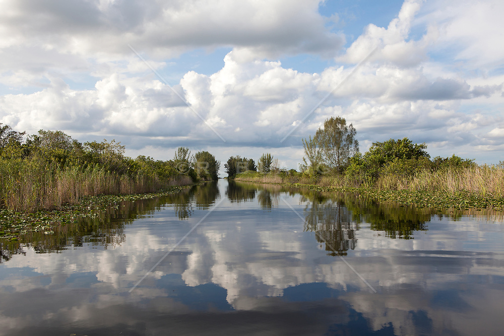 spectacular landscape in The Everglades