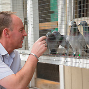 Mark Evans looks at a selection of their racing pigeons at John Marles' loft in Spring Hill, Fl., on Friday, November 22, 2013. Photo by David Stephenson
