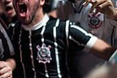 Libertadores 2012