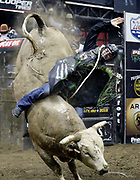 Jose Vitor Leme of Brazil rides Lonesome Fugitive during a Professional Bull Riders competition at the Sprint Center, in Kansas City, Mo., Sunday, March 24, 2019. (AP Photo/Colin E. Braley)