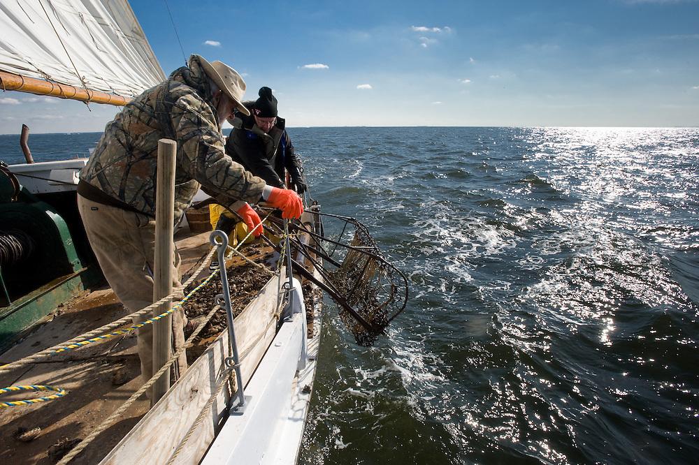 Men dredging for oysters