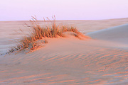 Jockey' s Ridge is the tallest natural sand dune system in the .Eastern United States. Located in Nags Head, it is one of the .most significant landmarks on the Outer Banks, North Carolina.