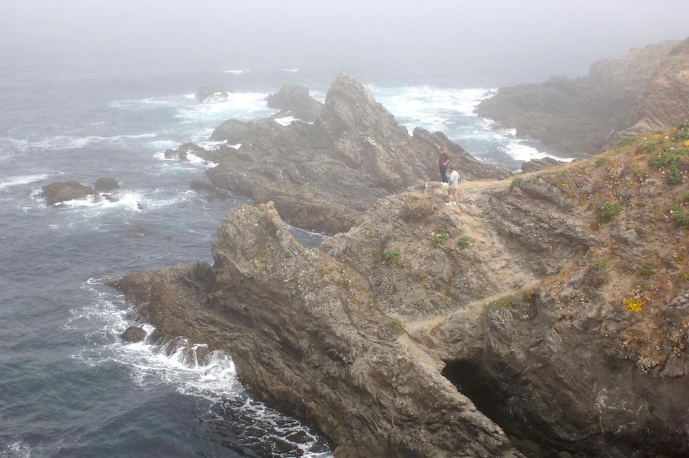 Morning Fog at Headlands, Mendocino, California, United States of America