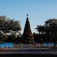 CELEBRATION, FL -- December 2, 2010 -- The Christmas tree is up just a few blocks from the town's first murder scene in the small, Disney master-planned community in Celebration, Fla., on December 2, 2010.  The town's first murder in its 14 year existence has drawn buzz worldwide and amongst its citizens alike.