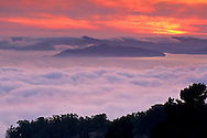 Fog banks roll into San Francisco Bay at sunset, from Berkeley Hills, California