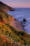 Sunset light on coastal cliffs over beach near Crescent City, California