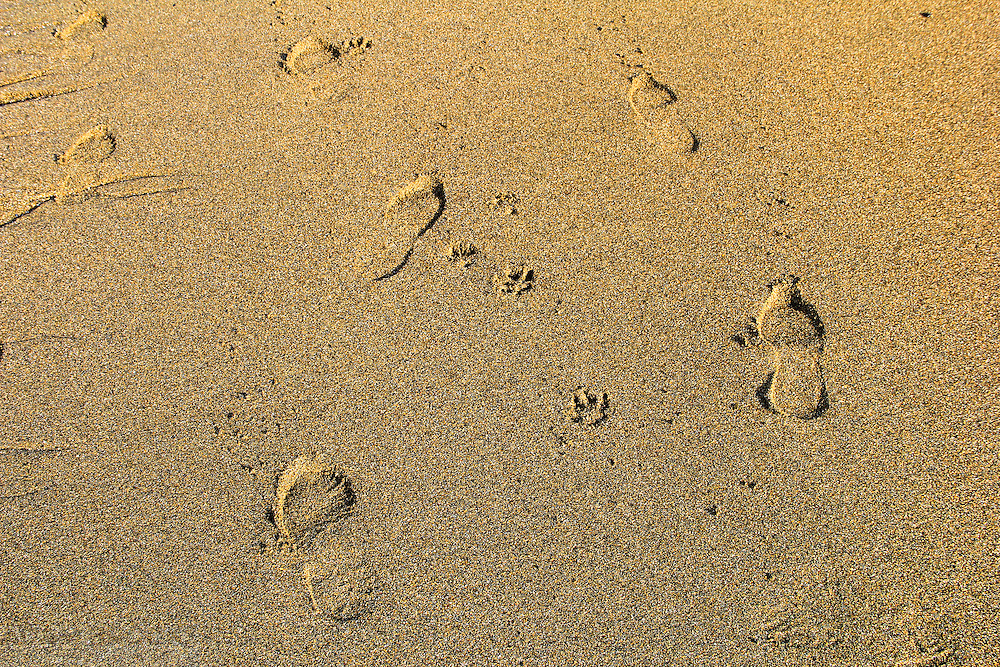 Man and his best friend take a walk at Glencolumbkille Beach