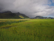 Near Vik, the verdant landscape below Eyjafjallajökull Glacier.