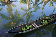In Coquí village, a local's hand carved canoe serves double duty as a banana hauler and transport for the occasional tourist who signs up for mangrove tours through the Choco Community Tourism Association's web site, visitchoco.com.