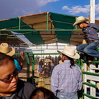 Spectators and contestants gather outside the arena to watch the wooly riding contest Friday during the Navajo Nation Fair in Window Rock.