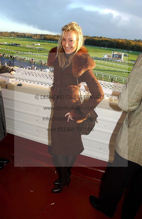 OLIVIA BUCKINGHAM at the 50th running of the Hennessy Gold Cup at Newbury Racecourse, Berkshire on 25th November 2006.<br />