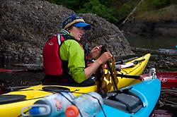 Guide Aileen Demonstrating the Edible Qualities of Bull Kelp in Haro Strait off Stuart Island, San Juan Islands, Washington, US