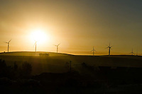 Wind Farm silhoutted at sunset , Overberg, Western Cape, South Africa.