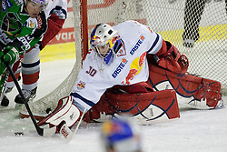 Thomas Höneckl (EC Red Bull Salzburg, #30) during ice-hockey match between HDD Tilia Olimpija and EC Red Bull Salzburg in 48th Round of EBEL league, on January 29, 2012 at Hala Tivoli, Ljubljana, Slovenia. (Photo By Matic Klansek Velej / Sportida)
