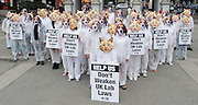 PETA Protest <br /> at Marble Arch, London, Great Britain <br /> 6th August 2011 <br /> <br /> 100 'Dogs' and 'Cats' line up to plead for protection in laboratories<br /> PETA members call on Government not to reduce UK Standards of Animal protection to lowest EU level.<br /> <br /> Protestors holding placards that say &quot; Help Us. Don't Weaken UK Lab Laws&quot;.<br /> <br /> <br /> Alistair Currie (policy adviser)<br /> with megaphone in some of the images. <br /> <br /> Photograph by Elliott Franks