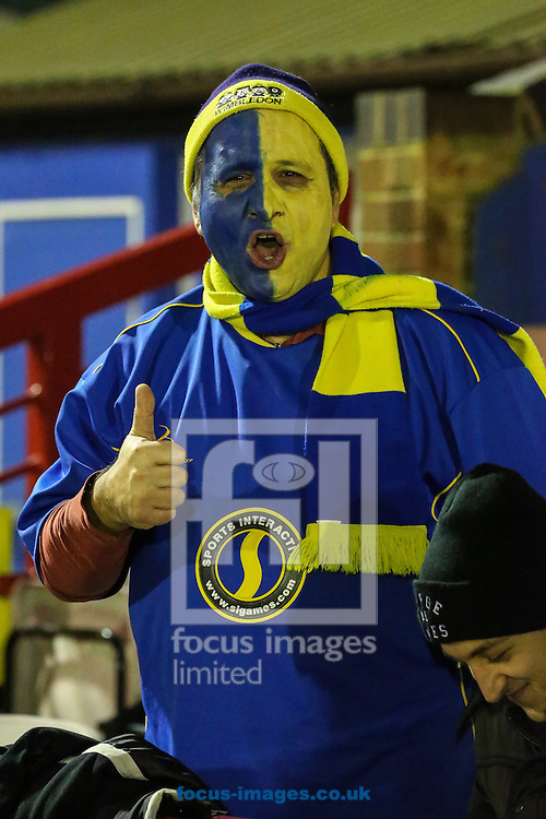 An AFC Wimbledon fan with his face painted before the FA Cup match at the Cherry Red Records Stadium, Kingston<br /> Picture by David Horn/Focus Images Ltd +44 7545 970036<br /> 05/01/2015