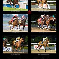 Million Sales Stakes - CTHS 2017