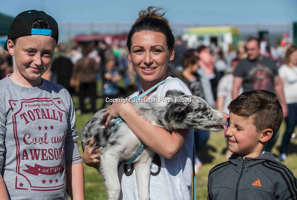 Dale Coleman (11) and step brother Johnston Meikle (6) with Mum Fiona Coleman and Blue Merle Collie pup Ollie<br /> <br /> Edinburgh Cat and Dog Home open day. <br /> 6th September 2015<br /> <br /> picture by Alex Hewitt<br /> alex.hewitt@gmail.com<br /> 07789 871 540